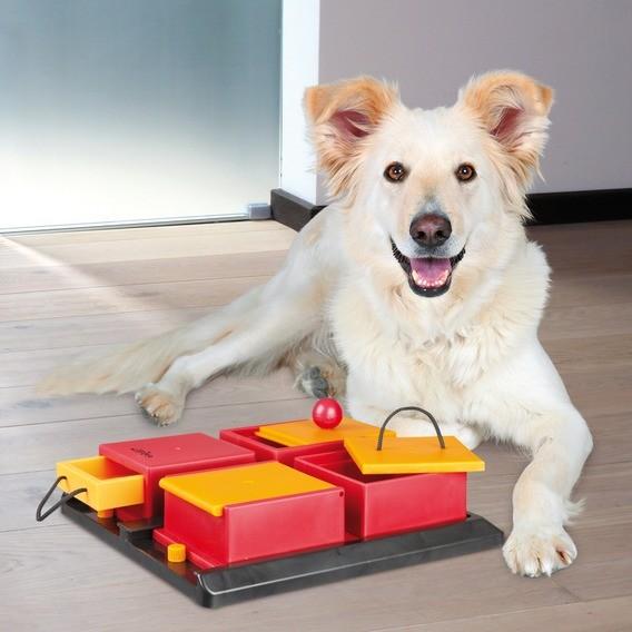 Dog Activity Poker Box 1, 31 × 31 cm
