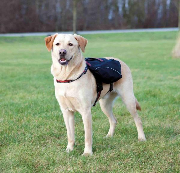 Rucksack für Hunde, L, 29x15cm, Bauchumfang: 60-90 cm, schwarz/rot