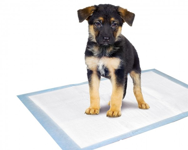 Welpen-Unterlage, Puppy Pads Trainingsmatte M, 60x40 cm, 10er Pack